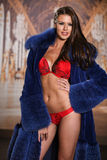Hot beautiful brunette woman wearing sexy red lingerie and luxury fur coat Royalty Free Stock Photos