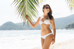Hot and beautiful girl wearing sunglasses and alluring white swimwear. Holding a palm on the beach Stock Photos