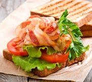 Hot big sandwich Royalty Free Stock Image