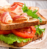 Hot big sandwich Royalty Free Stock Images