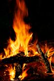 Hot bonfire burns on the beach on coastline Stock Image