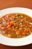 Hot bowl of soup Royalty Free Stock Photos