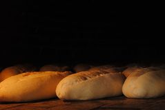 Hot bread Royalty Free Stock Image