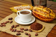 Hot brewed cacao drink, raw cocoa fruit, cacao beans, nibs. On table Royalty Free Stock Photos