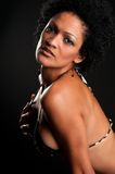 Hot Brunette Royalty Free Stock Image