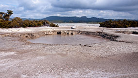 Hot bubbling mud in many places in Rotorua royalty free stock image