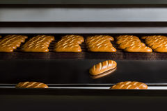 Hot buns from the oven. Fresh bread. Royalty Free Stock Photography