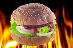 Hot burger Stock Image