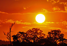 Hot burning sun Australian outback summer Royalty Free Stock Photography
