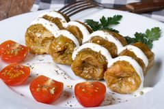 Hot cabbage rolls with sour cream and tomato Royalty Free Stock Photography