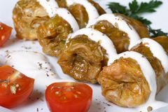 Hot cabbage rolls with sour cream on white plate macro Stock Image