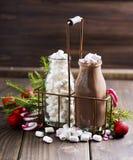 Hot cacao with marshmallows Stock Photos