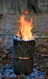 Hot camp fire Royalty Free Stock Photography