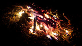 Hot camp fire   Royalty Free Stock Image