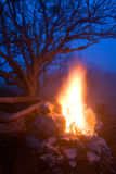 Hot campfire Stock Images