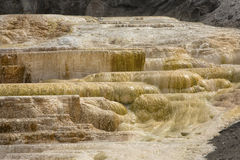 Hot, carbonate rock called travertine forms terraces in Yellowst Stock Photography