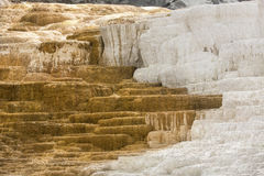 Hot, carbonate rock called travertine forms terraces in Yellowst Royalty Free Stock Image