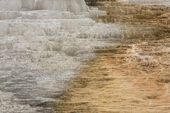 Hot, carbonate rock called travertine forms terraces in Yellowst Royalty Free Stock Images