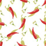 Hot cayenne pepper. Chile and flowers seamless pattern. Mexican food. Hot cayenne pepper. Chile and flowers seamless pattern. Mexican food Royalty Free Stock Photos