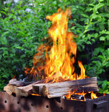 Hot Charcoal Barbecue Grill With Bright Flame On The Nature Stock Photo