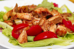 Hot Chicken salad with lettuce, apples and tomatoes. On white plate. Seasoned with red saffron leafles stock photography