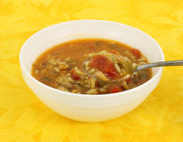 Hot chicken soup Stock Photography