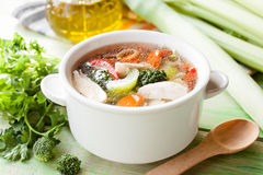 Hot chicken soup with vegetables Royalty Free Stock Photography