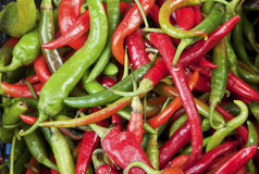 Hot chili. Image of red and green hot chili peppers Stock Photos