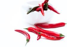 Hot chili. Red and green chili ina mortar Stock Image