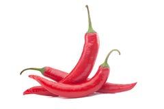 Hot Chili Paprika Stock Photo