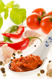 Hot chili paste in a spoon for asian recipes with the ingredient Royalty Free Stock Photos