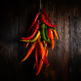 Hot chili pepper. Red hot chili pepper over dark wood Stock Images