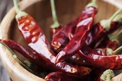 Hot chili pepper for cooking Stock Photos