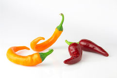 Hot chili pepper dance. Chili pepper on a white background Royalty Free Stock Photo