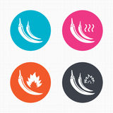 Hot chili pepper icons. Spicy food symbols Royalty Free Stock Photography