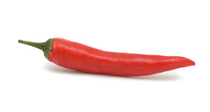 Hot chili pepper, isolated Stock Image