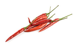 Hot chili pepper isolated on a white Royalty Free Stock Photo