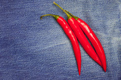 Hot chili pepper on jeans background Royalty Free Stock Images