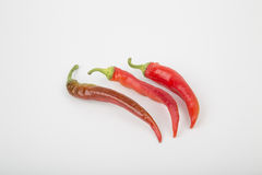 Hot chili pepper. Red color in the pan Royalty Free Stock Image