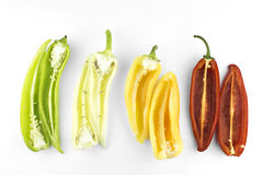 Hot chili pepper Royalty Free Stock Image