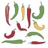 Hot chili pepper vector set isolated on white background. Vector Stock Photo