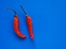 Hot chili pepper vegetables over blue with copy space Royalty Free Stock Images