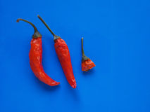 Hot chili pepper vegetables over blue with copy space Royalty Free Stock Photography