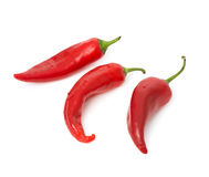 Free Hot Chili Peppers Royalty Free Stock Photo - 5527105