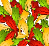 Hot Chili Peppers Background Royalty Free Stock Photography