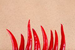 Hot chili peppers background Royalty Free Stock Image