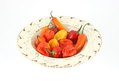 Hot chili peppers in bowl Royalty Free Stock Photos