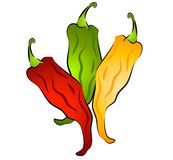 Hot Chili Peppers Clip Art. A clip art illustration of an isolated bunch of hot chili peppers in green, yellow and red Royalty Free Stock Photos