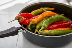 Hot chili peppers of different colors. A lot of hot chili peppers of different colors in the pan Stock Image