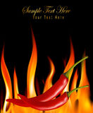 Hot chili peppers in fire. Vector. Royalty Free Stock Photo